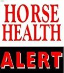 tjrhorsehealthalert-gray-horse-stall
