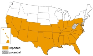 Triatomine bugs are typically found in the southern United States, Mexico, Central America, and South America (as far south as southern Argentina). The map above details triatomine occurrence by U.S. state. CDC 2012.