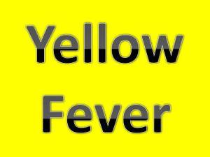 Yellow-fever