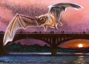 Congress-Avenue-Bridge-Bats