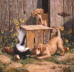 dog&skunk54
