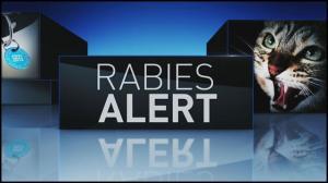 130726034208_Rabies-Alert-graphic