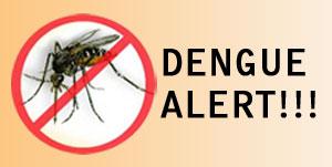 dengue_alert