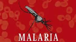 a.malaria.298ed98