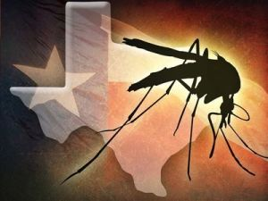 West_Nile_Texas