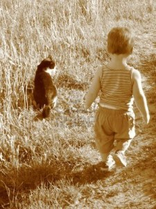 2625980-child-and-cat