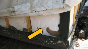 Damage from rodents tunneling in the foam insulation of a signature tent cabin, Yosemite National Park, summer 2012. CDC