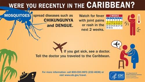 Chikungunya988405
