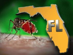 Dengue-Fever_10459