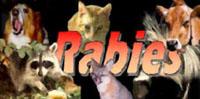 Rabieslogo45179