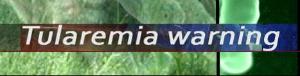 tularemia-pueblo-county-jpg