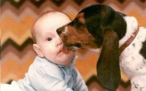 dog-lick-face