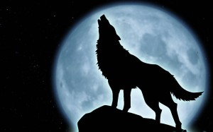howling-wolf-wallpaper-10927-hd-wallpapers