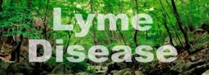 T_lyme_disease518d6