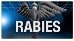rabies18893