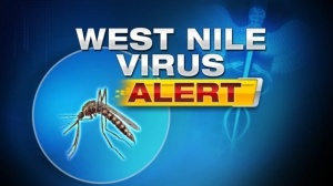 West-Nile-Virus-Alert3344-jpg