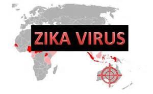 zica virus
