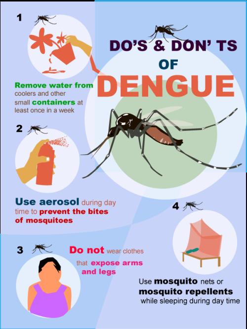 dengue-fever12 (1)