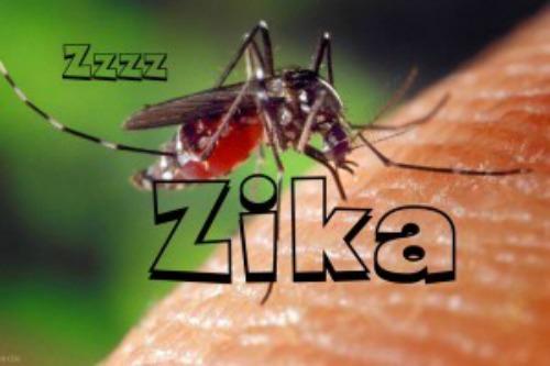 zika-300x200