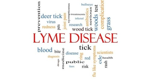 Lyme-Disease-Word-Cloud_Borders-620x330