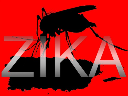 zika_virus_puerto_rico_800x600