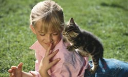 cat-breeds-kids-250x150