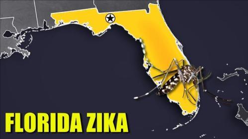 Florida+Zika