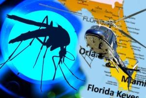 GM-mosquito-release.zika.fl