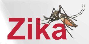 VIRUS-ZIKA-44