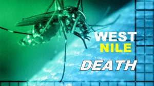 West-Nile-death-1024x576